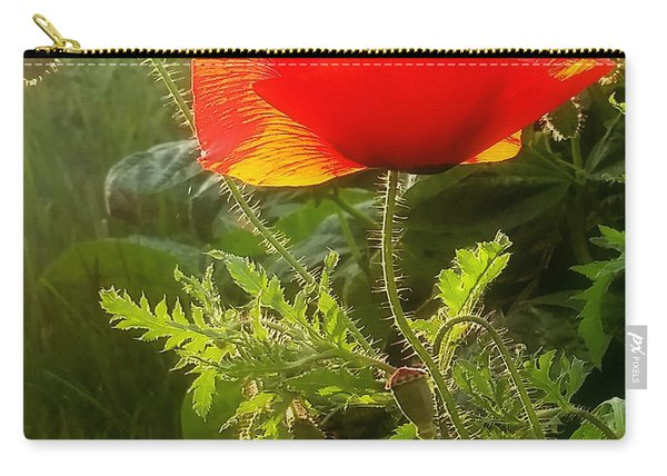 Red Poppy At Sunset Carry-all Pouch