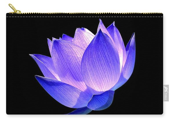 Enlightened Carry-all Pouch