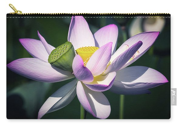 Entwined... Carry-all Pouch