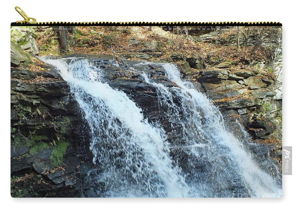 Erie Falls - Ricketts Glen Carry-all Pouch