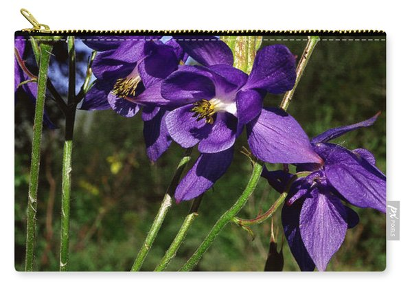 European Columbine Carry-all Pouch