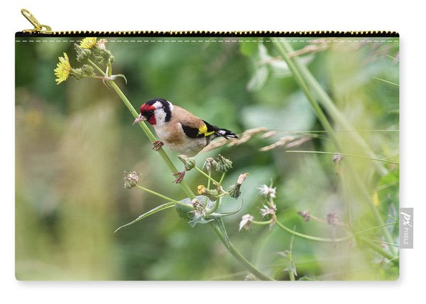 European Goldfinch Perched On Flower Stem B Carry-all Pouch