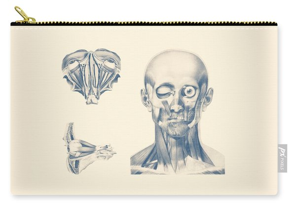 Eye Diagram - Multiview - Vintage Anatomy Poster Carry-all Pouch