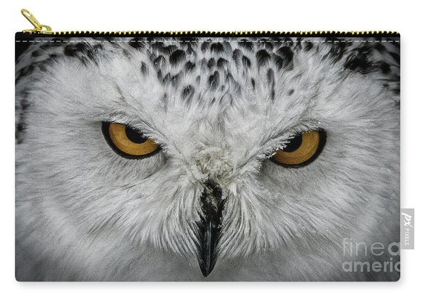 Eye-to-eye Carry-all Pouch