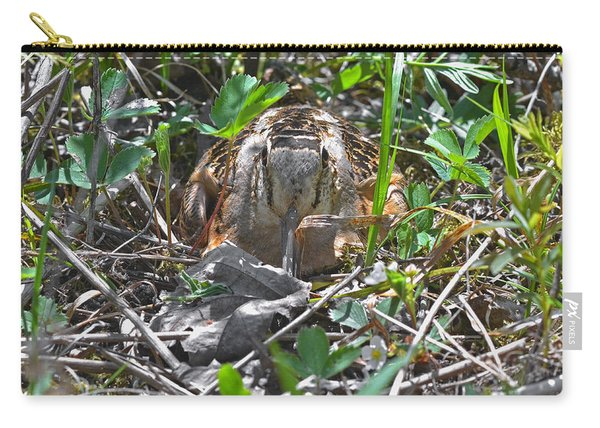 Eye To Eye Level With Lady Woodcock Carry-all Pouch