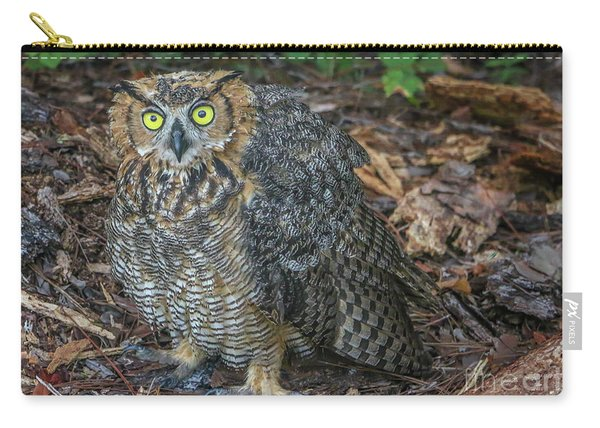 Carry-all Pouch featuring the photograph Eye To Eye With Owl by Tom Claud