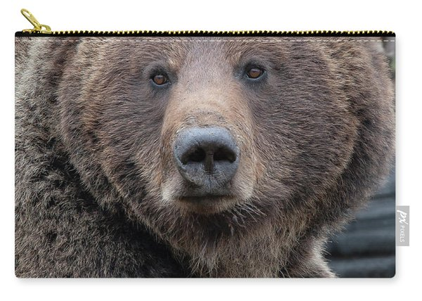 Face Of The Grizzly Carry-all Pouch