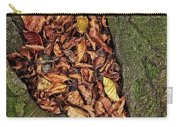 Fall Beech Tree Leaves Carry-all Pouch