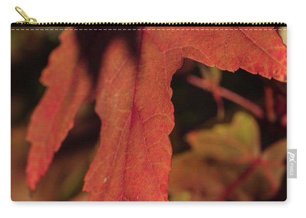 Fall Color 5528 16 Carry-all Pouch