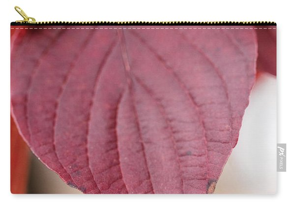 Fall Color 5528 52 Carry-all Pouch