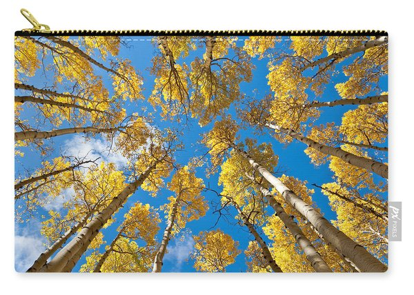 Fall Colored Aspens In The Inner Basin Carry-all Pouch