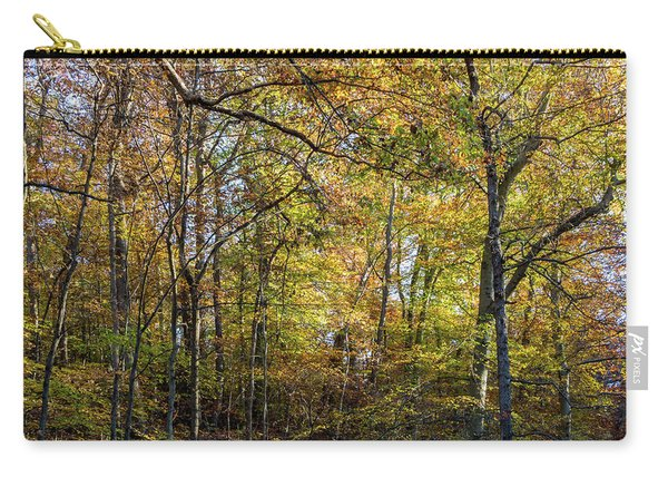 Fall Colors Of Rock Creek Park Carry-all Pouch