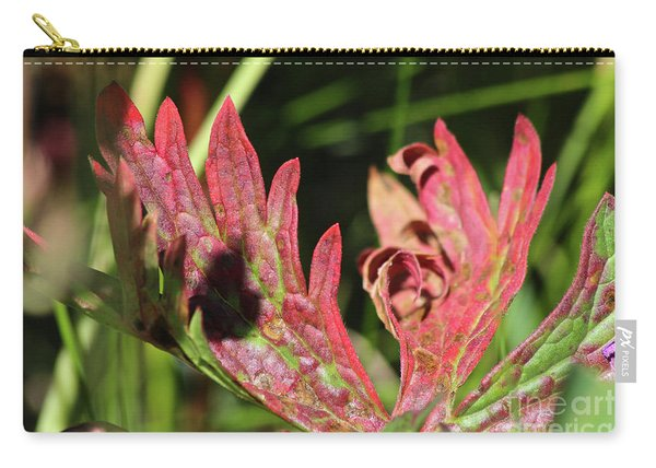 Fall Colours Carry-all Pouch