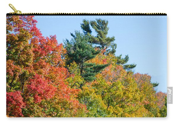 Fall Foliage 3 Carry-all Pouch