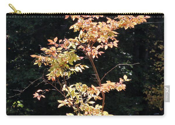 Carry-all Pouch featuring the photograph Fall Illumination by William Selander