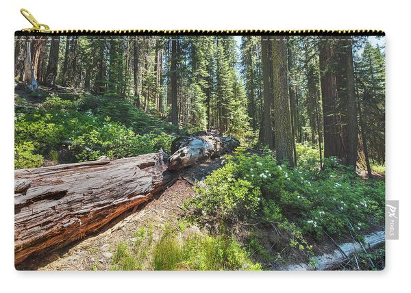 Fallen Tree- Carry-all Pouch