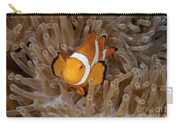 False Clownfish Carry-all Pouch