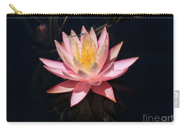 Familiar Bluet Damselfly And Lotus  Carry-all Pouch