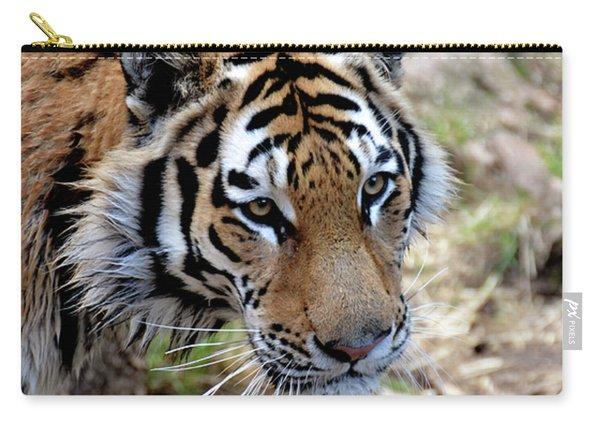 Feline Focus Carry-all Pouch