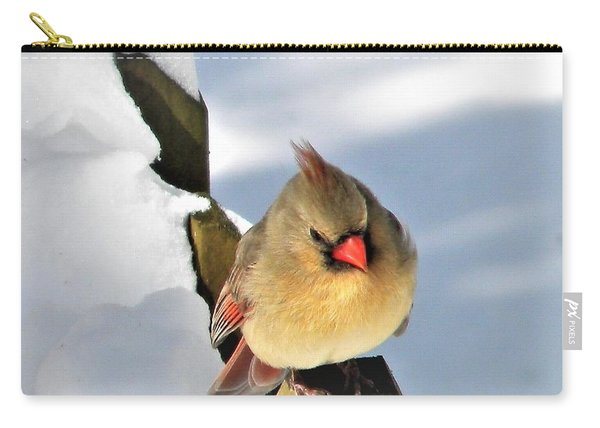 Female Cardinal On The Fence Carry-all Pouch