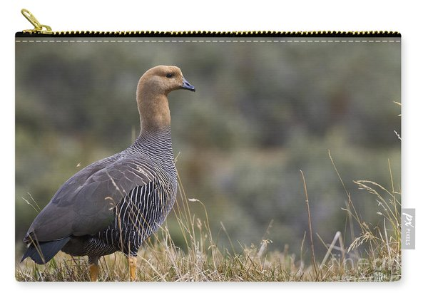 Female Upland Goose Carry-all Pouch