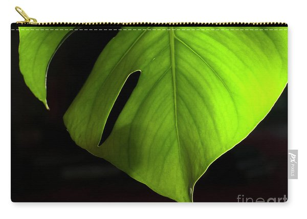 Fhgreen Carry-all Pouch