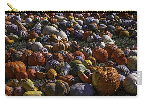 Field Of Pumpkins And Gourds Carry-all Pouch