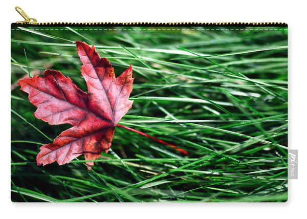 First Signs Of Autumn Carry-all Pouch