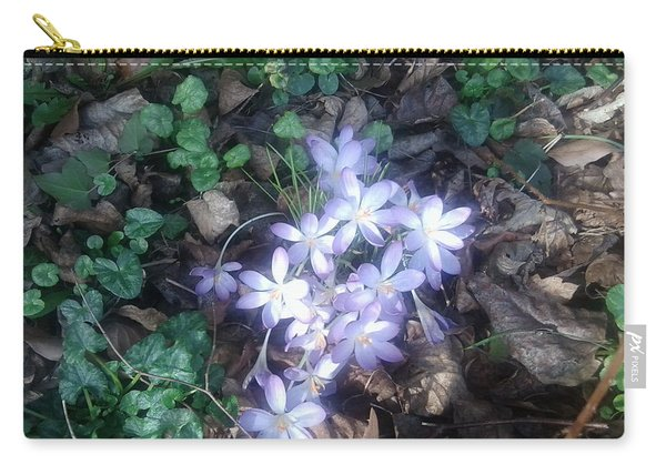 First Spring Treasures 2017 Carry-all Pouch