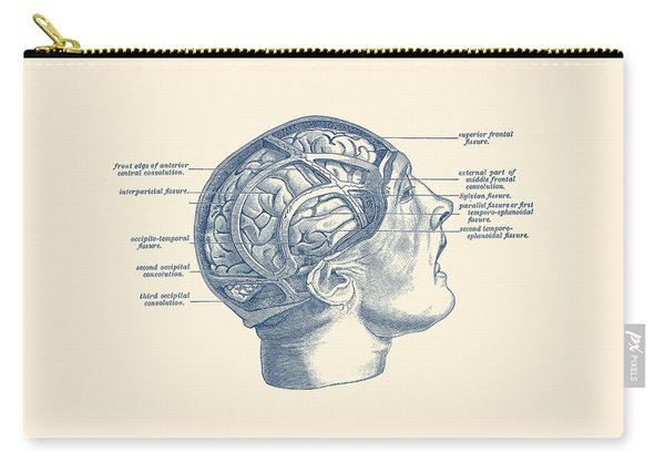 Fissure Focused Brain Diagram - Vintage Anatomy Carry-all Pouch