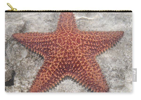 Five Star Fish Carry-all Pouch