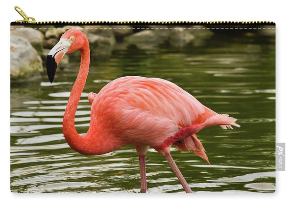 Flamingo Wades Carry-all Pouch