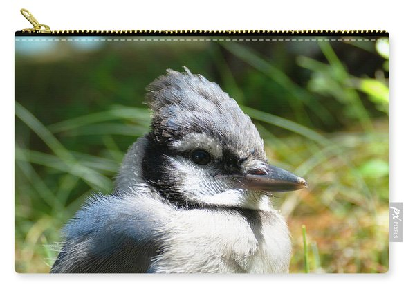 Fledgling Carry-all Pouch