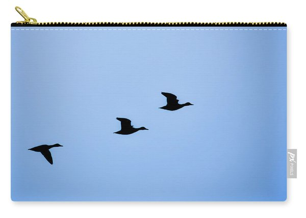 Flight Of Three Carry-all Pouch