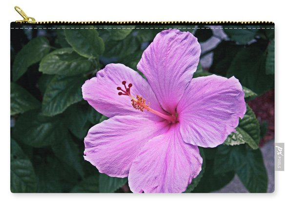 Florida Pink Hibiscus Carry-all Pouch
