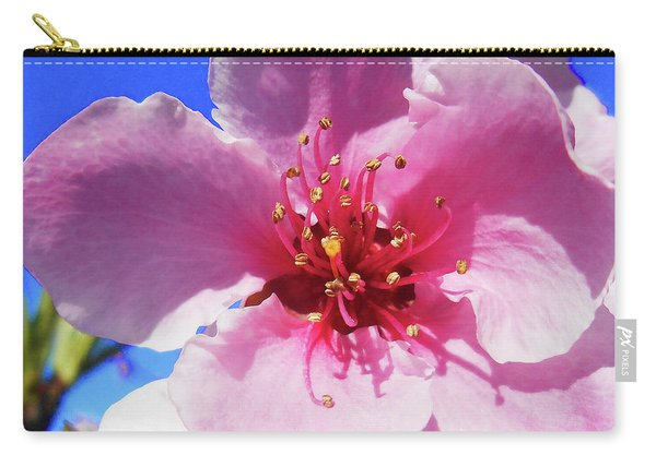 Flower Close Up Pink Blossom Carry-all Pouch