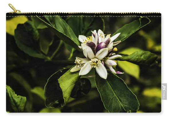 Flower Of The Lemon Tree Carry-all Pouch