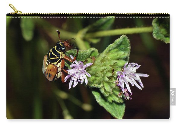 Flower Scarab - Trigonopeltastes Delta Carry-all Pouch