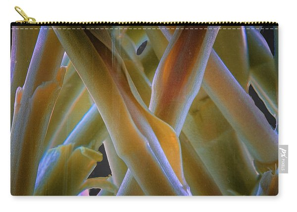 Carry-all Pouch featuring the photograph Flower Stems by Tom Singleton