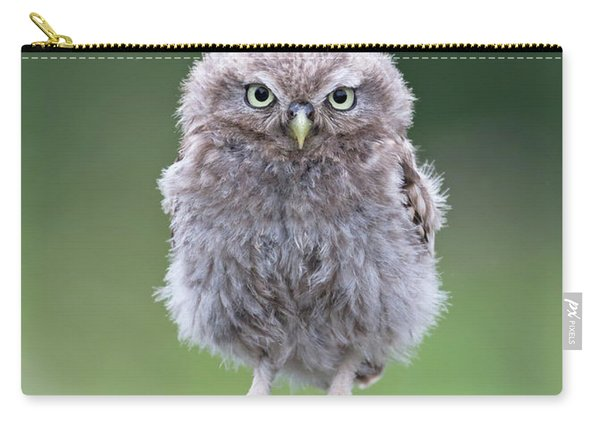 Fluffy Little Owl Owlet Carry-all Pouch