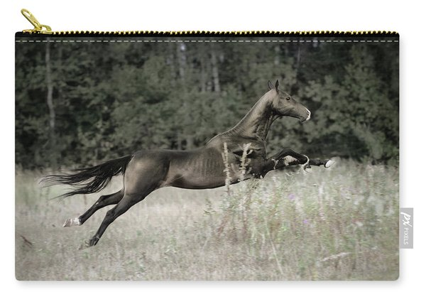 Flying Arrow Carry-all Pouch