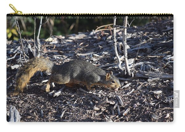 Carry-all Pouch featuring the photograph Squirrel Pprh Woodland Park Co by Margarethe Binkley