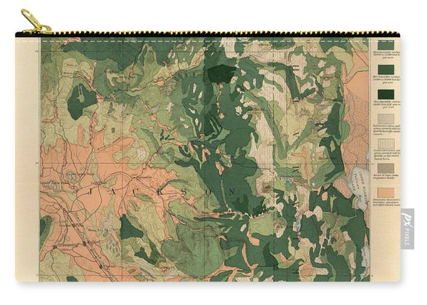 Forest Cover Map 1886-87 - Oregon Ashland Quadrangle - Geological Map Carry-all Pouch