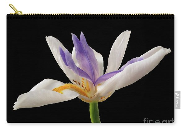 Fortnight Lily On Black Carry-all Pouch