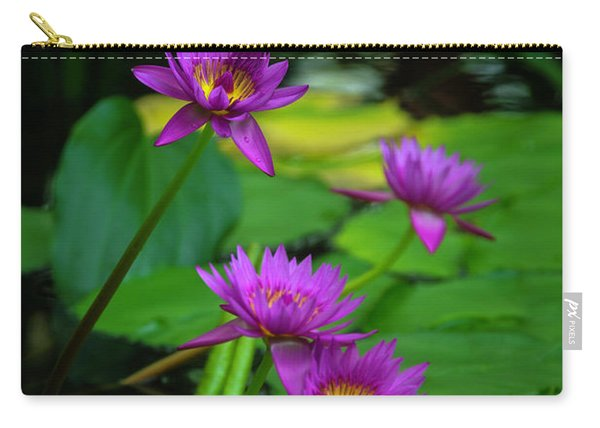 Four Waterlilies Carry-all Pouch