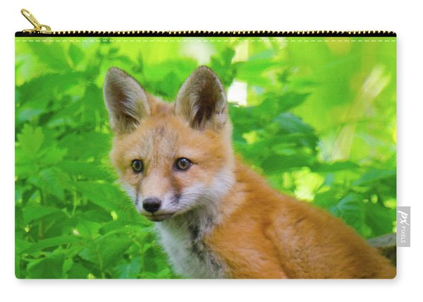 Fox Kit - 1 Carry-all Pouch