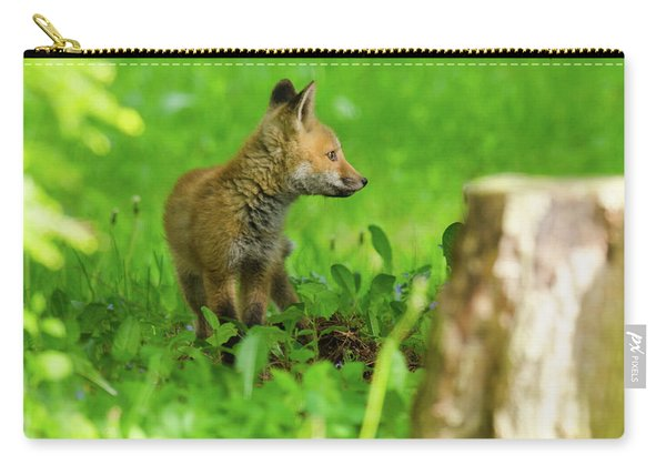 Fox Kit - 2 Carry-all Pouch
