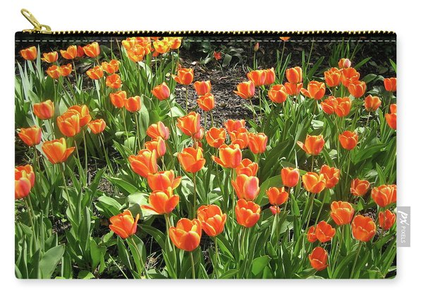 Carry-all Pouch featuring the pyrography Fred's Garden by Michael Lucarelli