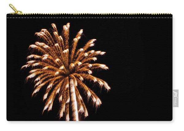 Freedom 2014 Carry-all Pouch