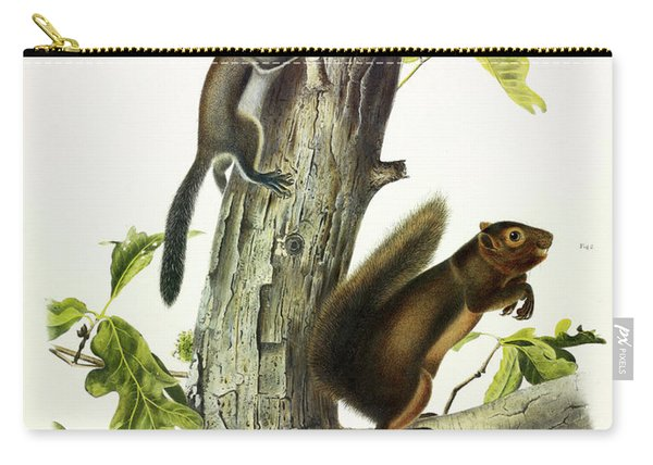 Fremont's Squirrel, Sooty Squirrel Carry-all Pouch